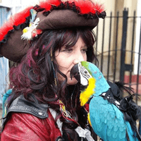 Pirates and Parrots will be at Sheffield Arena for YCC2017